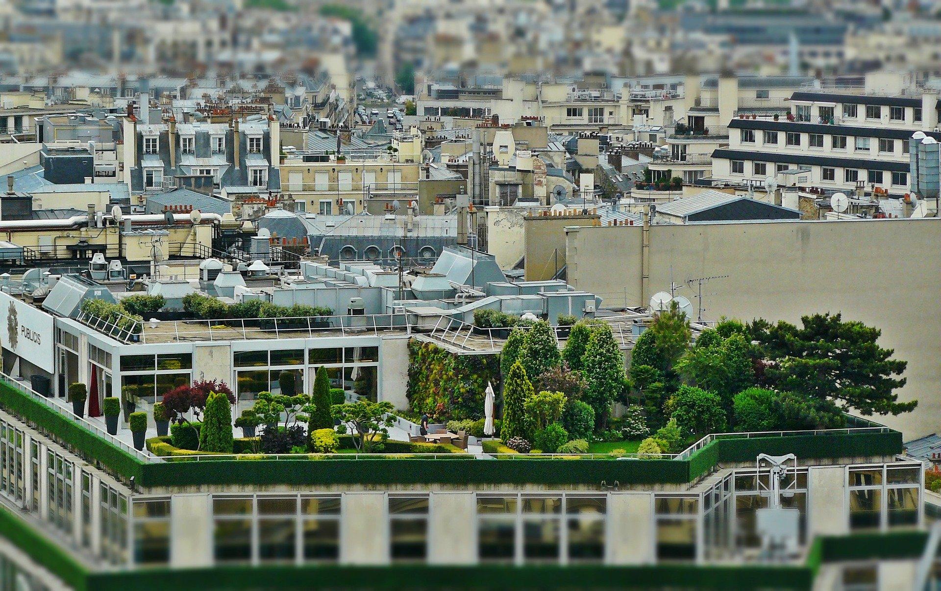 Bonus Verde 2020: giardini, balconi e terrazzi
