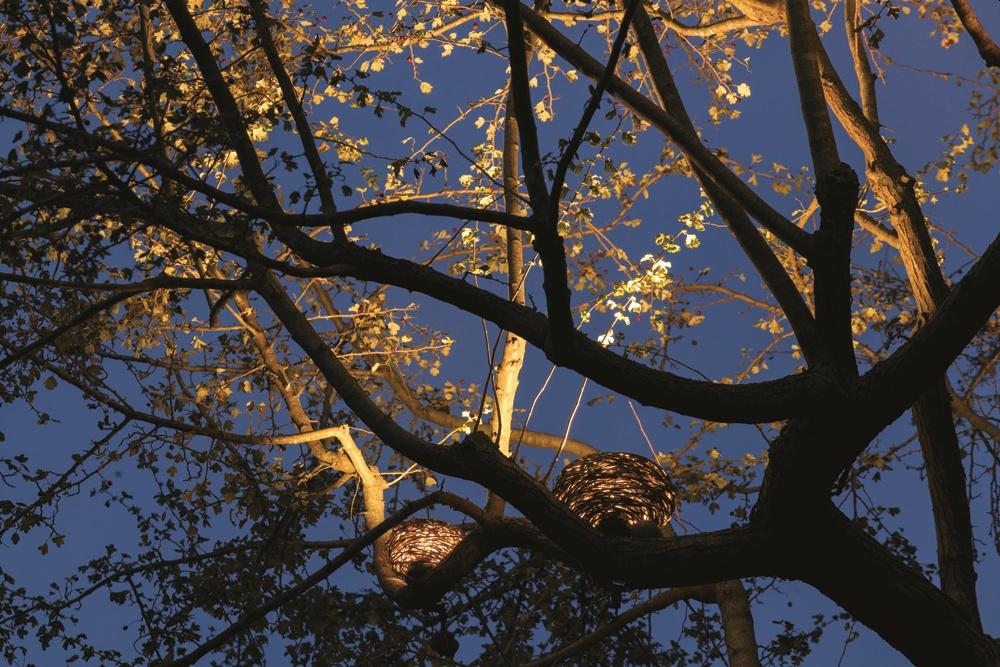5 idee per illuminare il giardino con stile e risparmiando