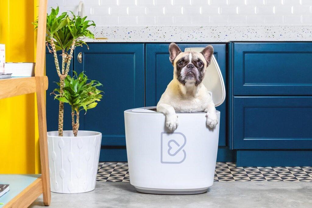 Barkyn Home: il dispositivo che si prende cura della salute del cane